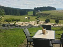 Gasthaus zum Hirschen, Furtwangen