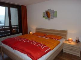 Rosenalm Appartment 97, Scheidegg