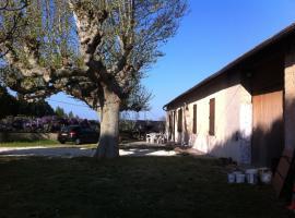 , Cavaillon