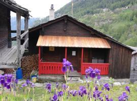 Möblierte charmante Wohnung in den Walliser Alpen, Zeneggen