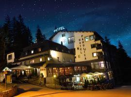 Hotel Pahuljica, Vlasic