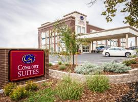 Comfort Suites Woodland - Sacramento Airport, Woodland