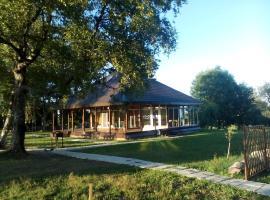 Holiday home Berezovyi Hutor, Izborsk