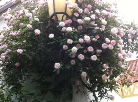 Patio das Flores, Ferreira do Alentejo