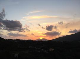 Radica Holiday, Eccica-Suarella