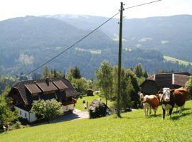 Ferienwohnung Lahnerhof, Arriach