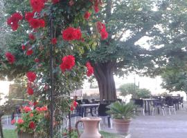 Il Castagno, Orciano di Pesaro