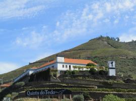 Quinta do Tedo, Folgosa