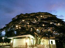 Eco Hotel, Panglao City