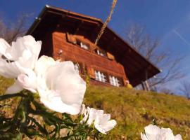 Ferienhaus Gfell Matt Glarus Suisse Welterbe UNESCO Sardona