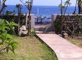 Amed Sari Beach Guesthouse, Amed