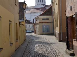 Sofijos studio Old Town