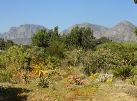 The Olive Grove, Somerset West