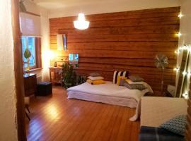 Kadriorg Vilmsi Apartment