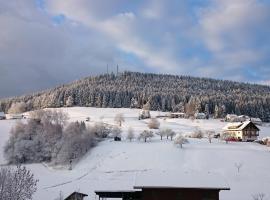 Waldblick, Baiersbronn