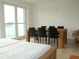 Danube Apartment with City View