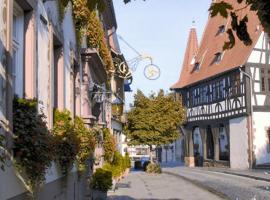 Hotel-Restaurant Drei Hasen, Michelstadt