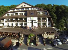 Hotel Fantanita Haiducului, Bradu