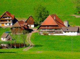 Apartment Ferienwohnung Im Schwarzwald, Oberreichenbach