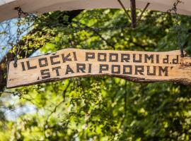 Hotel Stari Podrum, Ilok