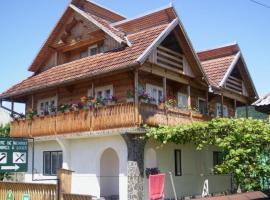 Pension Casa Muntean, Vadu Izei