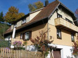 Haus Antonis, Triberg