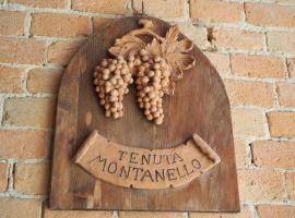 Tenuta Montanello B&B, Castiglione Falletto