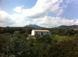 Nacchinono, Olbia