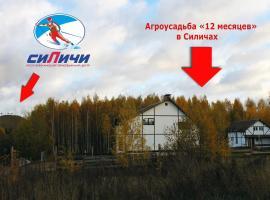Holiday home 12 mesyatsev, Silichi