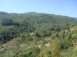DeiMori LaMassa, Borgo alla Collina