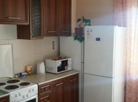 Apartment on Novogodyaya, נובוסיבירסק