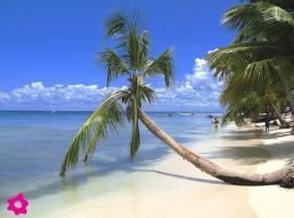 Africa Beach Punta Cana