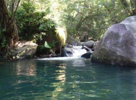 Daintree Secrets Rainforest Sanctuary, Diwan