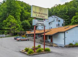 Smoketree Lodge by VRI resorts, Banner Elk