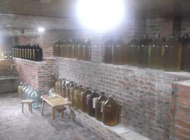 David Gabrichidzes Winery, Tsit'elkhevi