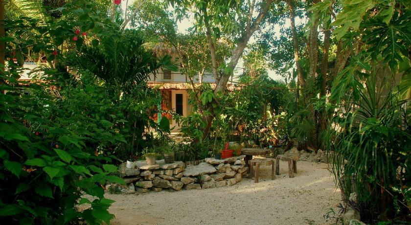 Mexico jardin de frida mexico hotels for Jardin principal location