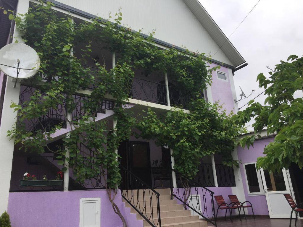 Guest House Laura