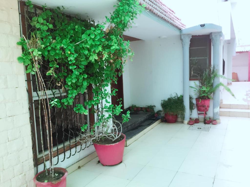 Karachi City Hotel