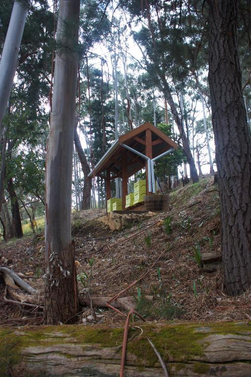 Longwood Retreat