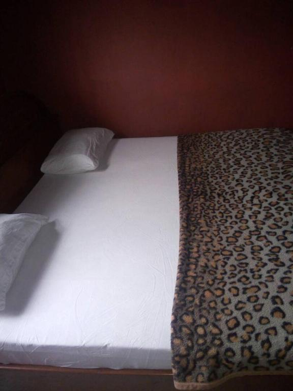 mashy guest house