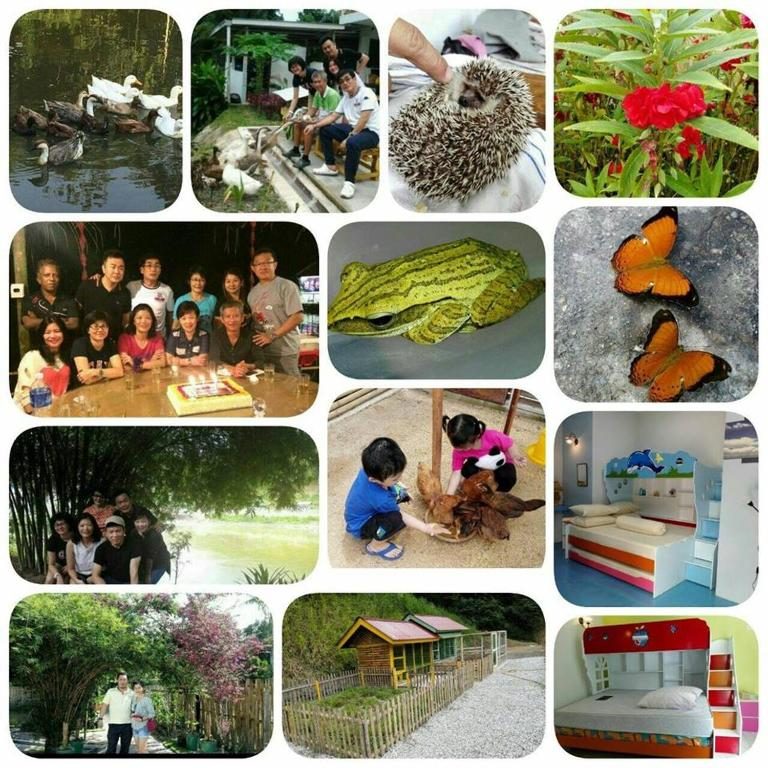Hulu Langat Home Stay Eco Farm / 自然生态休闲度假屋