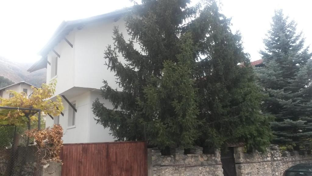 Guest House Khizhina