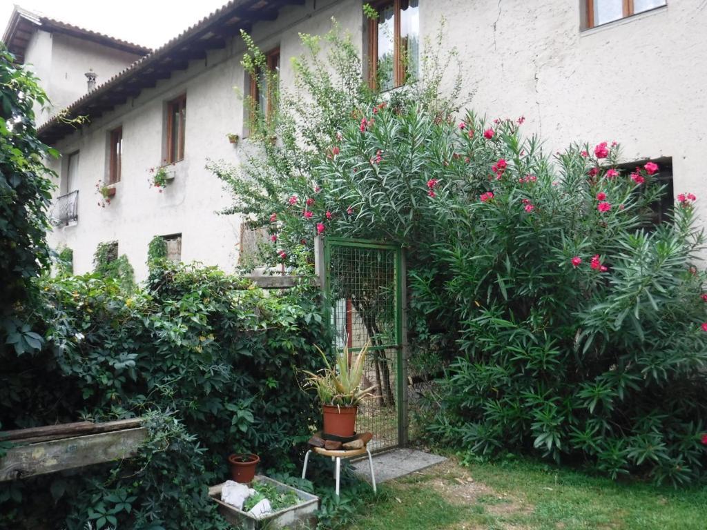Casa de campo Stasion Di Pueste (Italia Nogaredo Al Torre ...