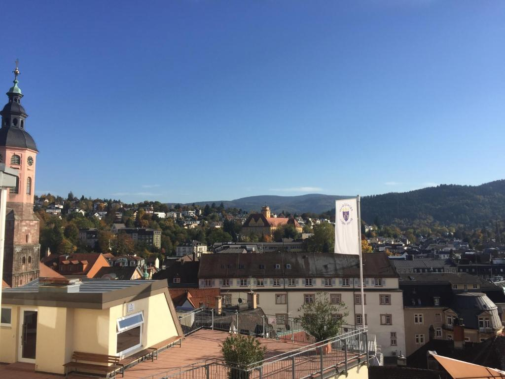 City View Apartment (Alemania Baden-Baden) - Booking.com