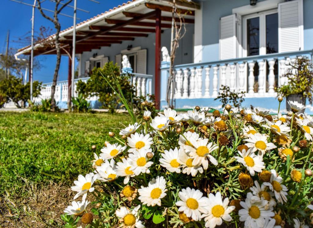 Casa de vacaciones Ascot Vale Holiday House (Grecia Laganas ...