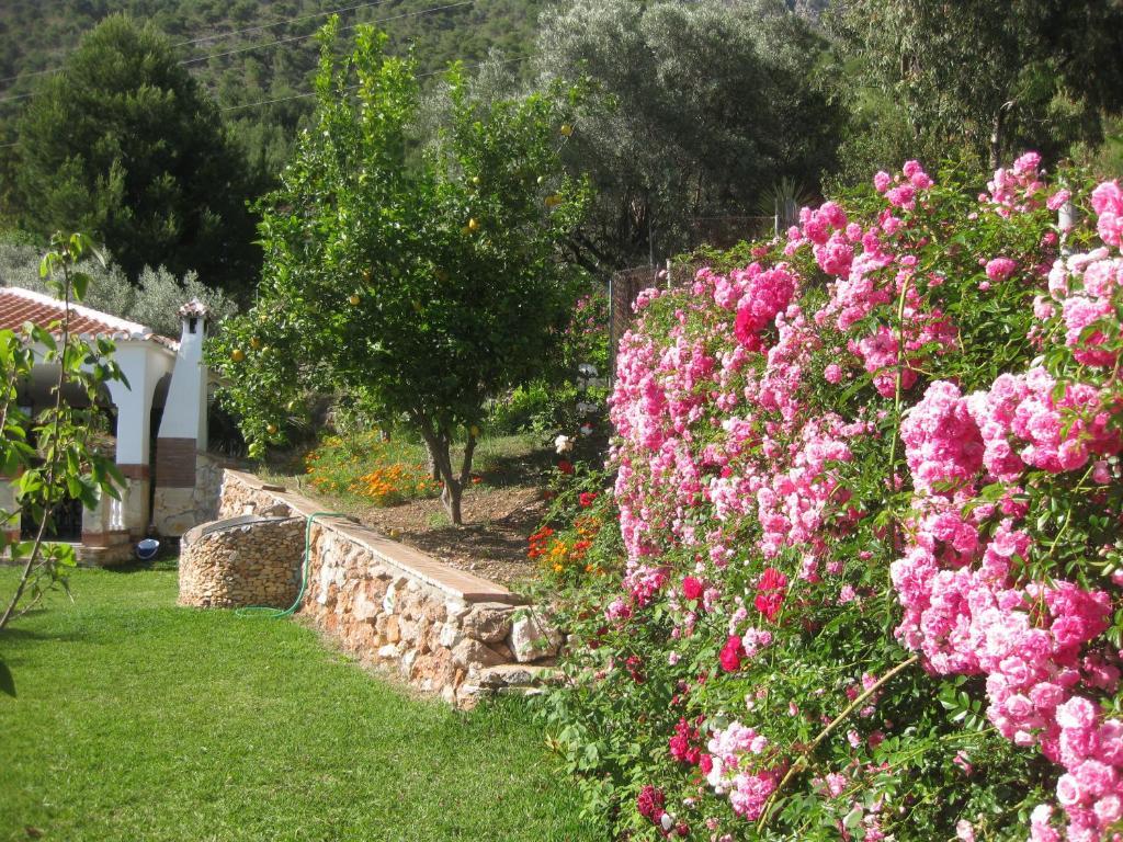 Casa de vacaciones Casa Leo (España Frigiliana) - Booking.com