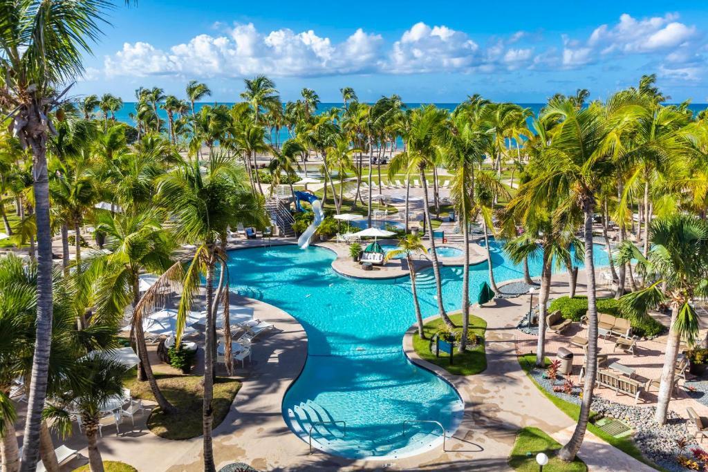 Una vista de la pileta en Hilton Ponce Golf & Casino Resort o alrededores