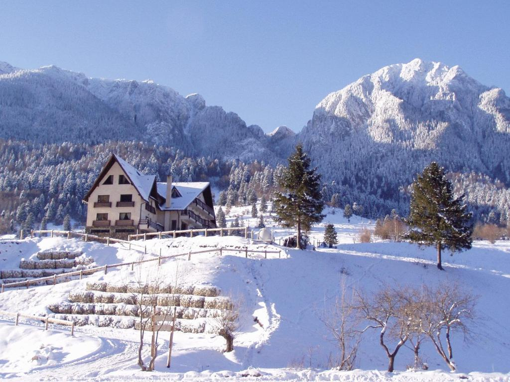 Pension Taverna Pietrei Craiului durante o inverno