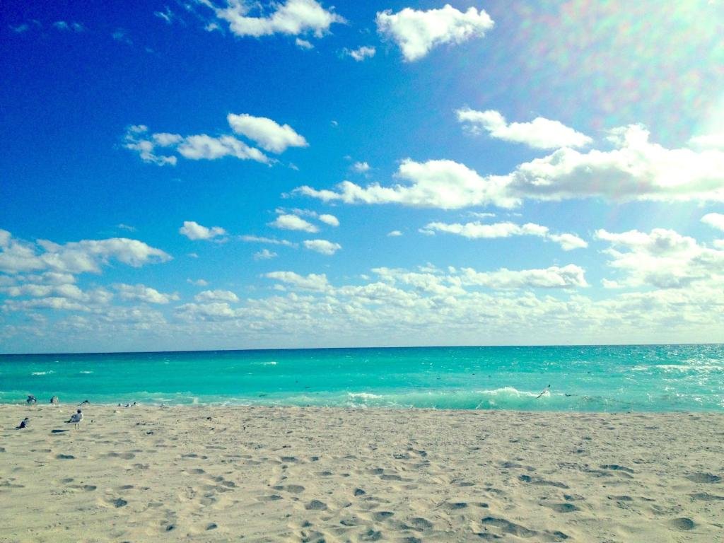 Tropical Island Beach Ambience Sound: شقة على شاطئ البحر (أمريكا شاطئ ميامي)