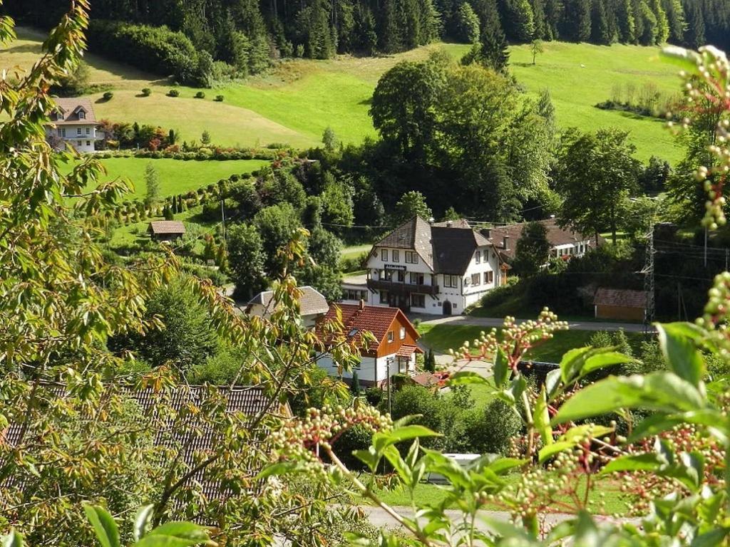 Отзывы Hostel Black Forest Holzwälder Höhe